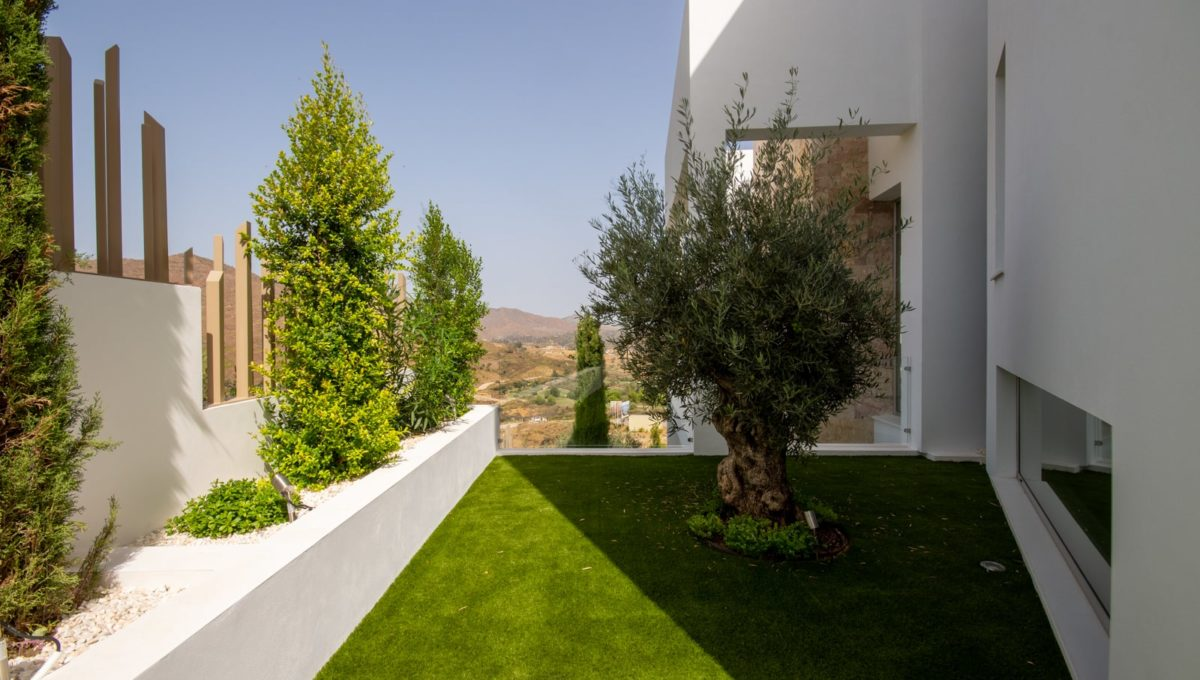 olive-plants-in-luxury-house-for-sale-in-mijas-costa
